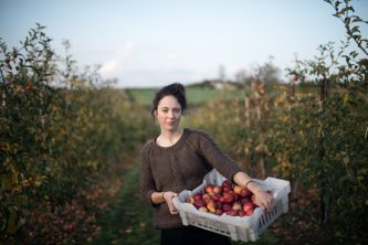 A gleaner on a farm - gathering apples that would otherwise go to waste - part of my Food Waste Warriors collection documenting food waste in the UK